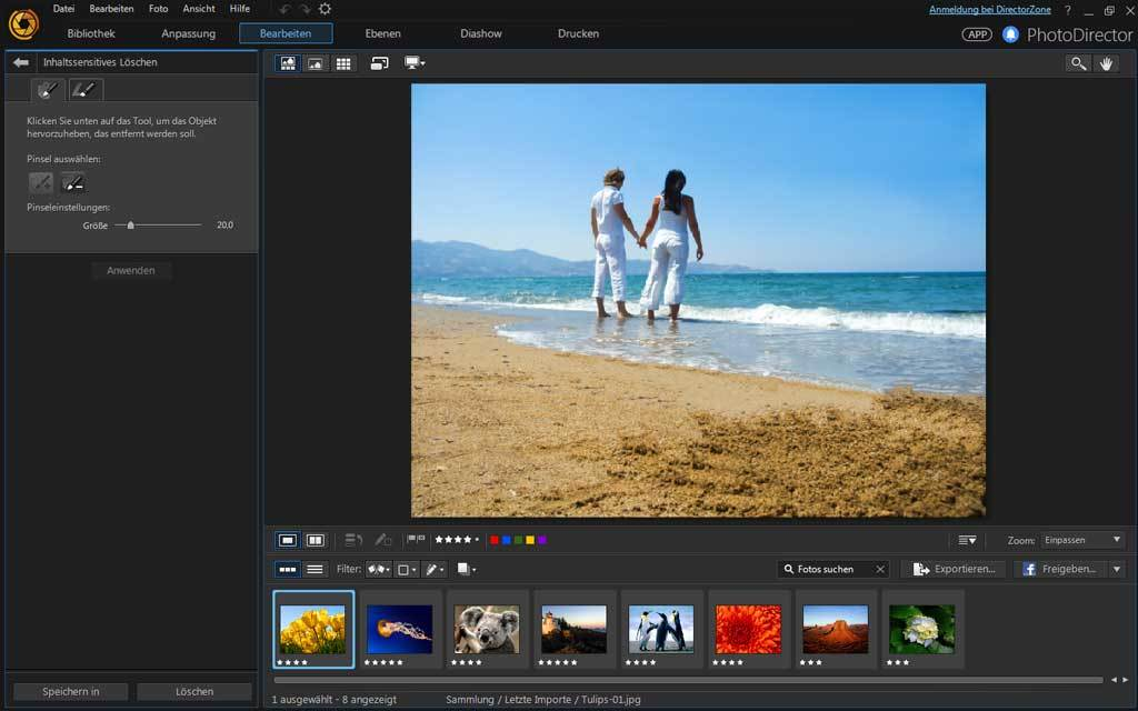 PhotoDirector 8.0 Deluxe screenshot 2