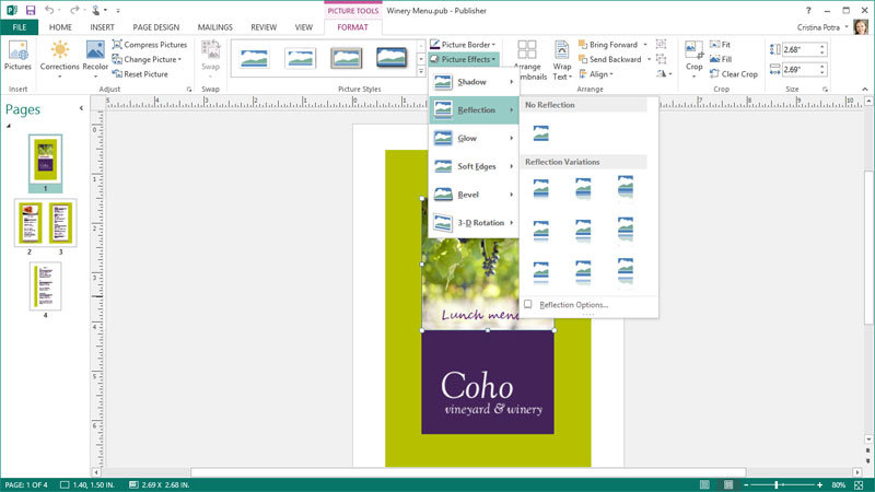 Microsoft Office 365 Home Premium - Subscription 1 year screenshot 6